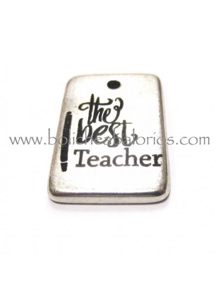 Placa grabada The Best Teacher 23x18